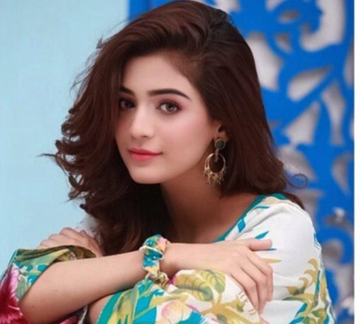 Laiba Khan Wiki, Biography, Age, Height, Family, Boyfriend, TIkTok & Pictures