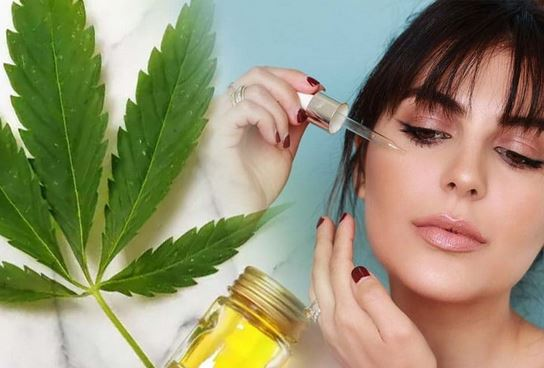 CBD Oil and the Benefits for You