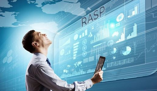 Rasp security and its uses