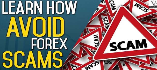What Research Can You Do To Avoid Forex Scams