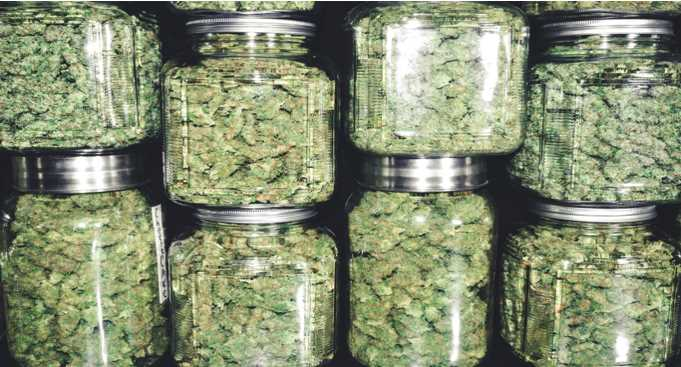Beginner's Guide to Choosing a Dispensary